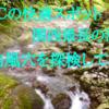 【-20℃で夏も快適】関西最長の洞窟を探検してみた(河内風穴)
