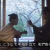 NHK大河ドラマ「青天を衝け」 第1話 雑感 子供時代からやるの久し振りに見たわ。