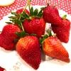 つる付きイチゴ Long Stem Strawberryies 食べやすくて実がしっかりとした歯ごたえ十分でした。