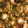 12月はポイントサイトでの稼ぎ時!!?ポイントサイトの季節的要因と企業広告の関係