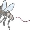 ヒトを殺す生物No.1の蚊、アルコール除菌シートで身を守れ!