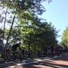 【ロードバイク】第7回東京ヒルクライムHINOHARAステージに参加してきた