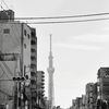 【こんなところからも】東京スカイツリーが見えている幸せ。。。 2019/05/04