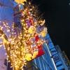 新宿のイルミネーション✨✨