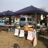 久々の岡崎ファーマーズマーケット、イチゴ、ミカン、リンゴで大人気!