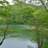 ドッコ沼(山形県山形)