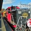 トロッコ列車と愛宕神社ハイキング