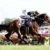 11/10(日)の京都競馬場のレース予想