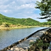 秘境的湿原、赤城覚満淵を歩く
