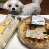 セブンイレブンの新発売!「とろ~りカマンベールチーズグラタン」と「ふんわりコッペのたまごサラダ」!