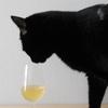 アロマティックなワインでリフレッシュ