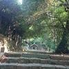 【大和・下居神社】崇峻天皇の子・蜂子皇子が結んだ歴史の絆【庄内・出羽三山神社】