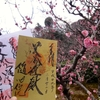 梅園開園中限定の梅柄入り御朱印 京都・随心院門跡