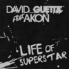 David Guetta Feat Akon - Life of a Superstar 歌詞和訳