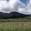 里山ハイク:十観山(青木村)