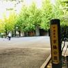 京橋の小さなオアシス「京橋公園」【東京都の公園・中央区】