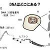 Y染色体から紐解く チンギスハン=源義経説