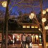 軽井沢ツアー【白銀に輝く雲場池&星野温泉トンボの湯】