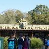 WDW旅行記㉕ ディズニー流動物園、アニマルキングダム