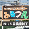 長野市『つくりたて生アイスの店 ふるフル』。(2016.8.13土、8.17水)