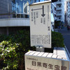 東京観光日:Tokyo Sightseeing Day