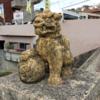 【沖縄観光】那覇市街、街歩き&シーサー像