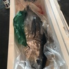 高知市中央卸売市場秋祭り。沖ボラ&沖ウルメがおいしかったの。