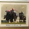 『競馬パネル:トウカイテイオー「1993年:第38回有馬記念」』