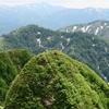 ◆ゆるRUNのYさんより~懐かしい「鑓ヶ峰登頂?!」の写真