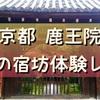 【京都 鹿王院】女性専用!静寂を楽しむ大人の秋の宿坊体験