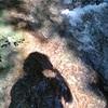 【滝】じろえもんの滝。会津下郷町にある不思議な滝を探検してみた。県道346号線。