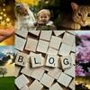ブログ初心者でもサクッと簡単に使えるフリー写真素材サイトまとめ!!【追記型:現在4サイトご紹介】