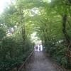 秋のアウトドア!!!
