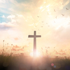 Lightworker channelings - キリストのメッセージ。 -2019/08/27