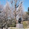 『希林のコトダマ』樹木希林さんから学ぶ あなたが遺す最後の蔵書は?