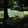 おいよの池(新潟県小千谷)