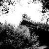 京都 下写!なんてね  RyuYudai  Leica Mモノクローム(Typ246) NOCTILUX-M 1:0.95/50 ASPH. 龍安寺 RYOANJI TEMPLE