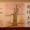 代表作続々!奥村土牛展は傑作・名作が目白押しの特別展でした!【展覧会レポート・感想】