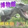 動画84~86 恐竜博物館