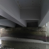 徳島県鳴門市大毛島 網千島橋へ行ってきました。