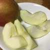『つがる』リンゴ2019初物
