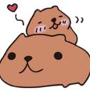 かぴばらさんの覚書ブログ (nonkapibara 自分メモ)
