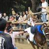 奇祭を超えたNO.1のおもしろさ!愛知県高浜市の馬の祭『おまんと祭り』