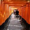 【西の吉方位旅行】伏見稲荷大社〜お狐さんとの不思議な出会い〜