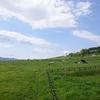 【雑談】北海道に住んで驚いたこと?いやいや同じ北海道でも札幌に住んで驚いたこと