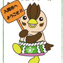 irumatchaブログ