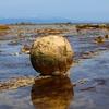 【観光】小豆岩と寒風山回転展望台