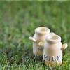 牛乳に酸を加えると沈殿する白い物質 カゼインナトリウム(カゼインNa)
