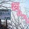 第35回水郷潮来桜まつり!