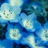 春先に統合失調症が出てくる? その1